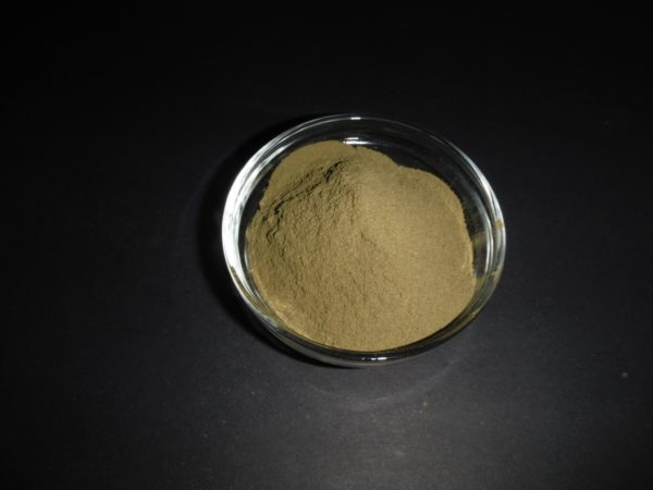 Maiden Hair Leaf Extract